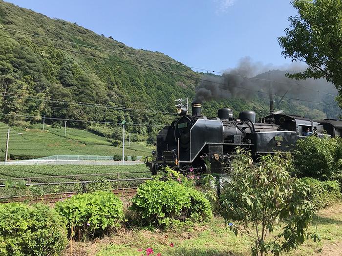 社員旅行BBQで大井川鉄道が見えた